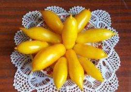 Помидоры Банановые ноги: описание и фото