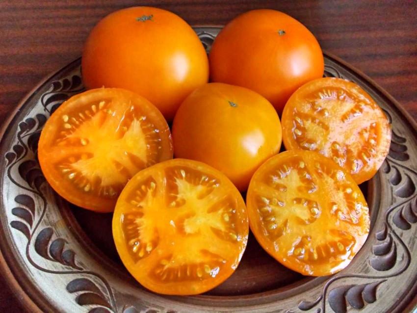 Описание и характеристики сорта томатов Хурма, урожайность и выращивание