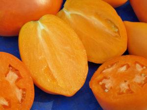 Сорт помидоров Золотой Кенигсберг: характеристика и описание