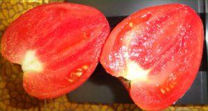 Сорт помидоров Кардинал: описание и фото