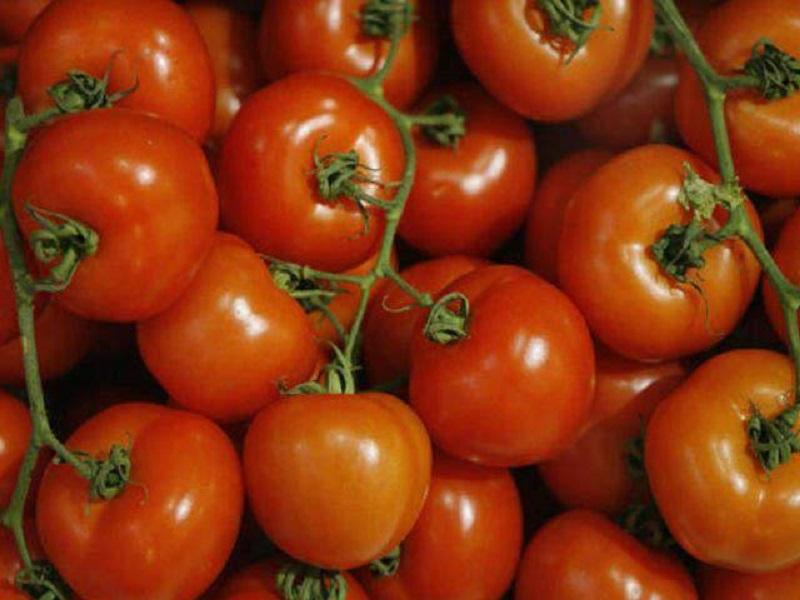 как формируют томаты марьина роща фото уютной
