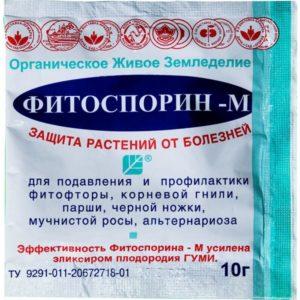 Помидоры Орлиный клюв: описание с фото