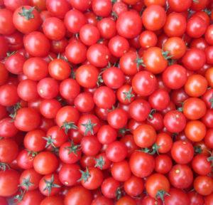 Томат черри Вишня красная: характеристика и описание сорта, фото, урожайность