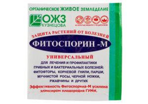Сорт томата Челябинский метеорит: описание и фото.