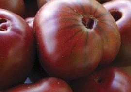 Помидоры Сахар коричневый: описание сорта, фото