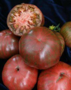 Сорт томата Полосатый шоколад: описание, фото, урожайность