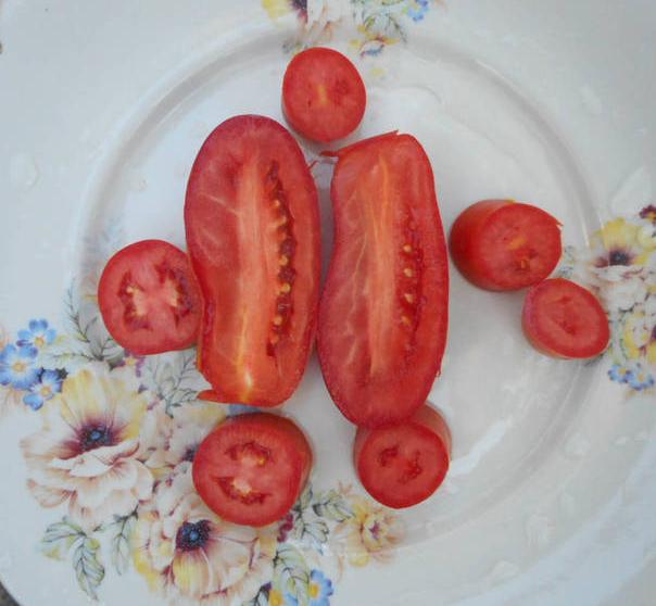 Помидоры Веселый гном: описание сорта с фото