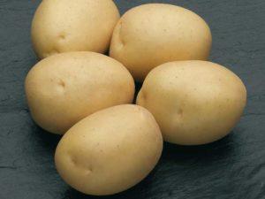 Картофель Наташа: характеристики сорта, урожайность, отзывы