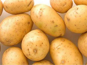 Картофель Ривьера: характеристики раннего сорта, отзывы