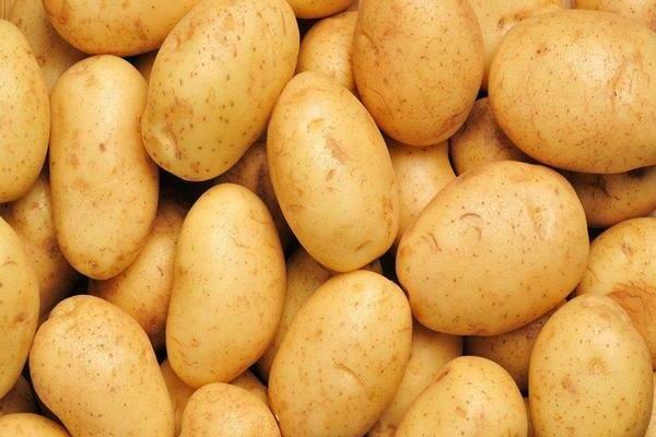 Картофель Бриз: характеристики сорта, вкусовые качества, отзывы