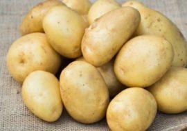 Картофель Уладар: характеристики сорта, урожайность, отзывы