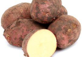 Картофель Ред Соня: характеристики сорта, вкусовые качества, отзывы