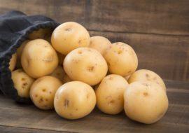 Картофель Вега: характеристики сорта, отзывы