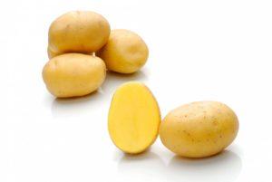 Картофель Агата: характеристики сорта, вкусовые качества, отзывы