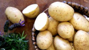 Картофель Янка: характеристики сорта, вкусовые качества, отзывы