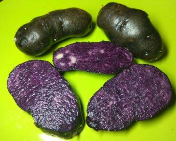 Картофель Гурман: характеристики сорта, вкусовые качества, отзывы
