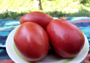 Помидоры Де Барао розовый: фото, описание, уход, выращивание
